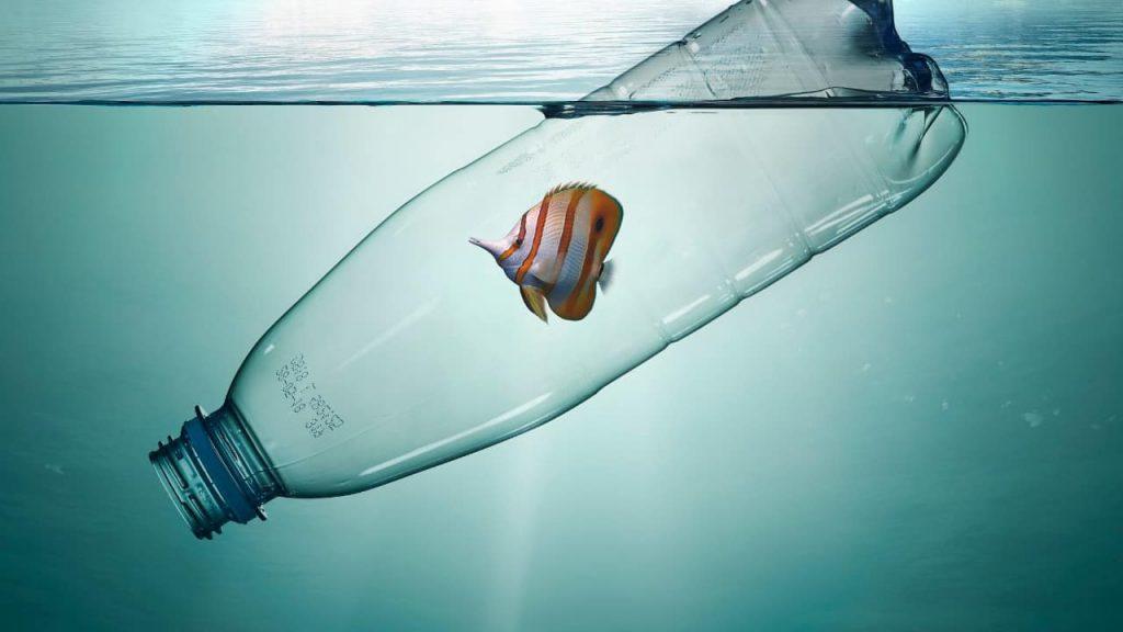 proteggere ambiente marino